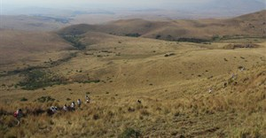 The Pretoria High Court has stopped Uthaka Energy from starting to mine coal this week in the critical water source area of Mabola, Mpumalanga. Archive photo: supplied