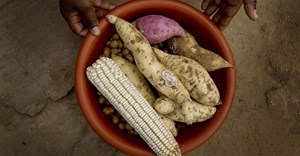 Improving South Africa's food security