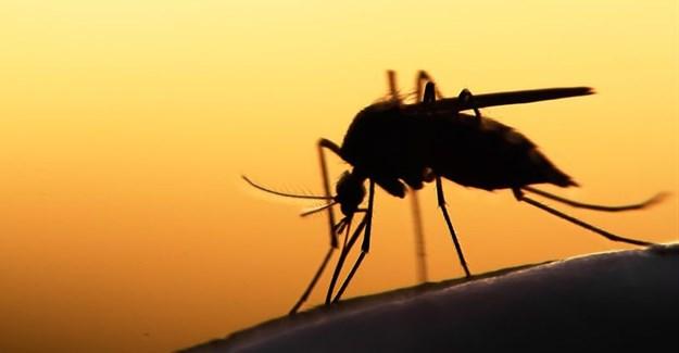Malaria eradication by 2025, an achievable goal