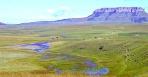 Ingula Nature Reserve declared wetland of international importance