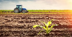 What SA agriculture needs from international trade