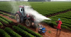 Farming hygiene practices can help protect agricultural value chain