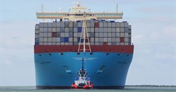 SA importers, and the rising cost of vessels and containers