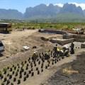 Vergelegen completes eroded watercourse rehabilitation programme