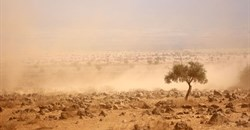 IIASA researchers produce new framework to enhance national climate action