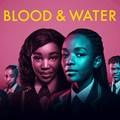 Clockwork picks up major wins at the 2021 Prism Awards for Netflix: Blood & Water