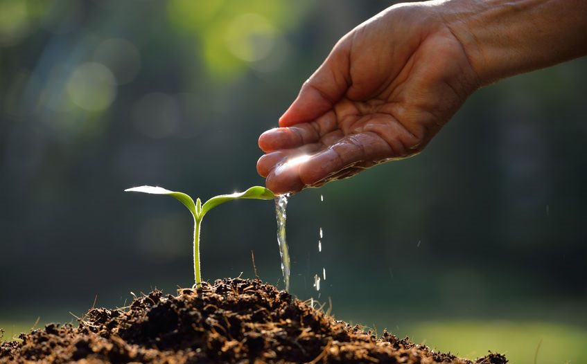 Last call for applications for AGCO Africa's agribusiness qualification