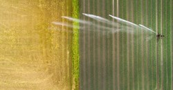 Big irrigation projects in Africa have failed to deliver. What's needed next
