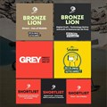 South Africa's first Digital Craft Lion awarded to Grey Africa