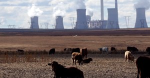 Cows graze as steam rises from the cooling towers of Matla Power Station, a coal-fired power plant operated by Eskom in Mpumalanga province, South Africa, 20 May, 2018. Reuters/Siphiwe Sibeko/File Photo