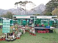 Scan Display, proud infrastructure sponsor for Investec Kirstenbosch Plant Fair 2015