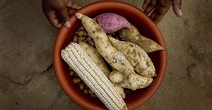 How to put women at the centre of Africa's foodsystems