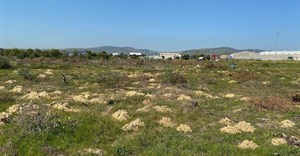 The Racing Park Developers' Association wants to overturn the sale of industrial land to the Western Cape Human Settlements Department for housing 1,500 families from overcrowded informal settlements in Dunoon. Photo: Peter Luhanga
