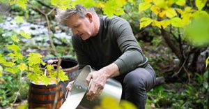 Nat Geo's Gordon Ramsay: Uncharted serves up season 3 with local chefs cooking along