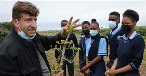 Coega launches its second plant rescue initiative