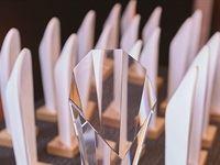 AMASA Award Trophies