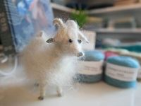 Miniature version of the mohair-producing Angora goat