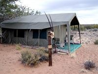 Sanbona Explorer Camp: A holistic safari adventure
