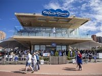#Loeries2017: California Dreaming with Unilever SA