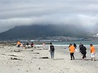 South Africans show up to clean up