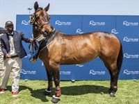 Kyalami Horse Of The Season 2018
