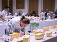 SA Dairy Championships receives 882 entries