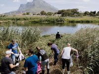 adidas collects over 550kg of waste from Black River