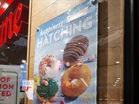 Krispy Kreme -Signage 2