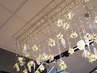 Woolworths - Decorations, visual merchandising